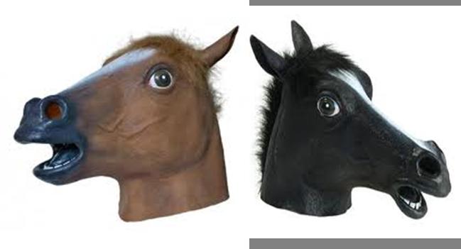 PNG Horse Head - 53281