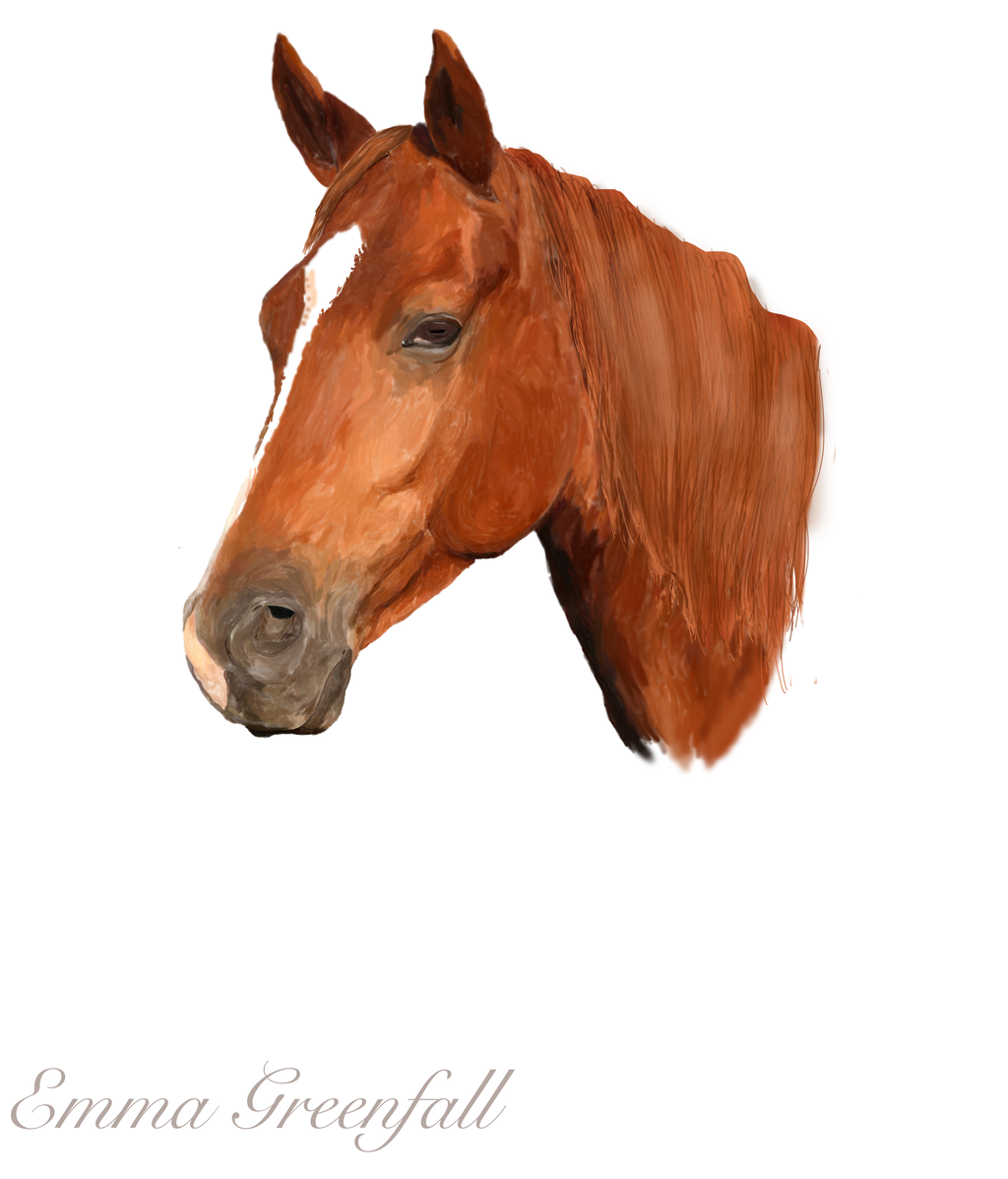 Horse head by EmmaGreenfall Horse head by EmmaGreenfall - PNG Horse Head