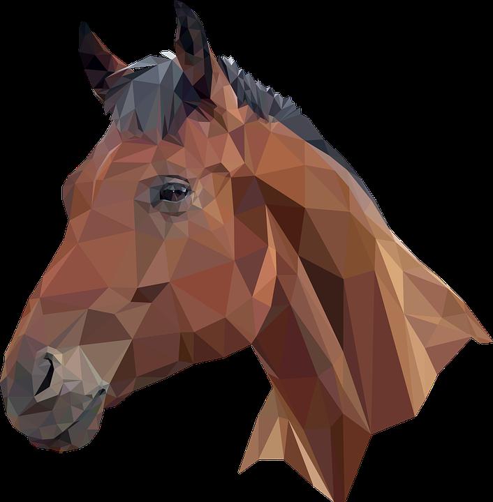 PNG Horse Head - 53279