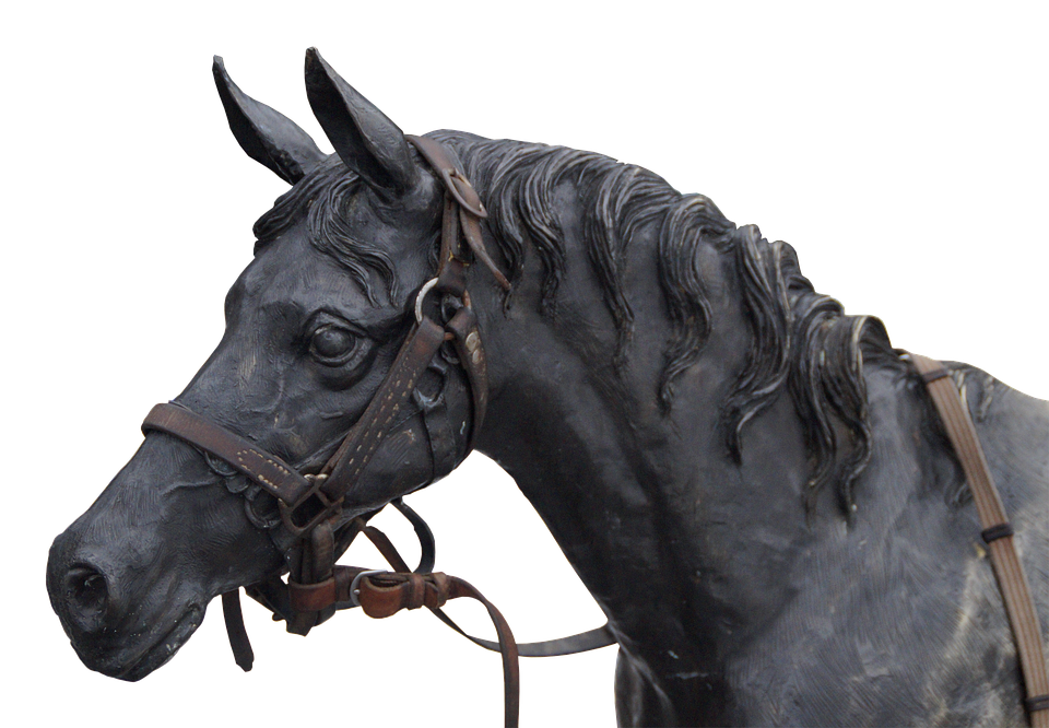 Horse, Horse Head, Portrait, Sculpture, Animal - PNG Horse Head