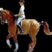 PNG Horse Riding-PlusPNG.com-220 - PNG Horse Riding