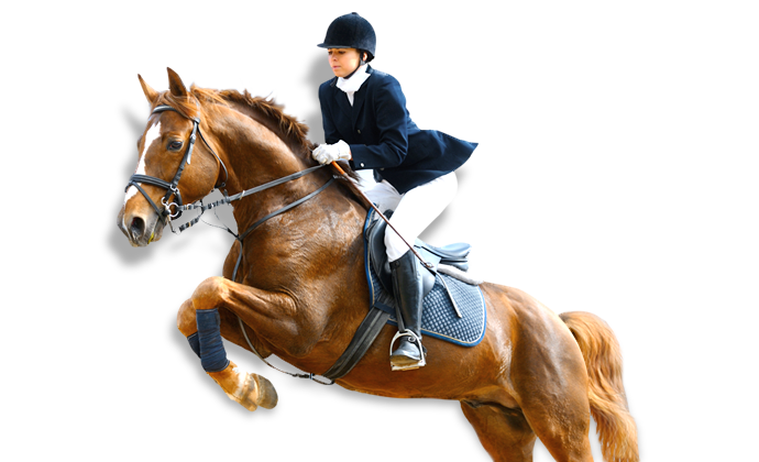 PNG Horse Riding - 69301