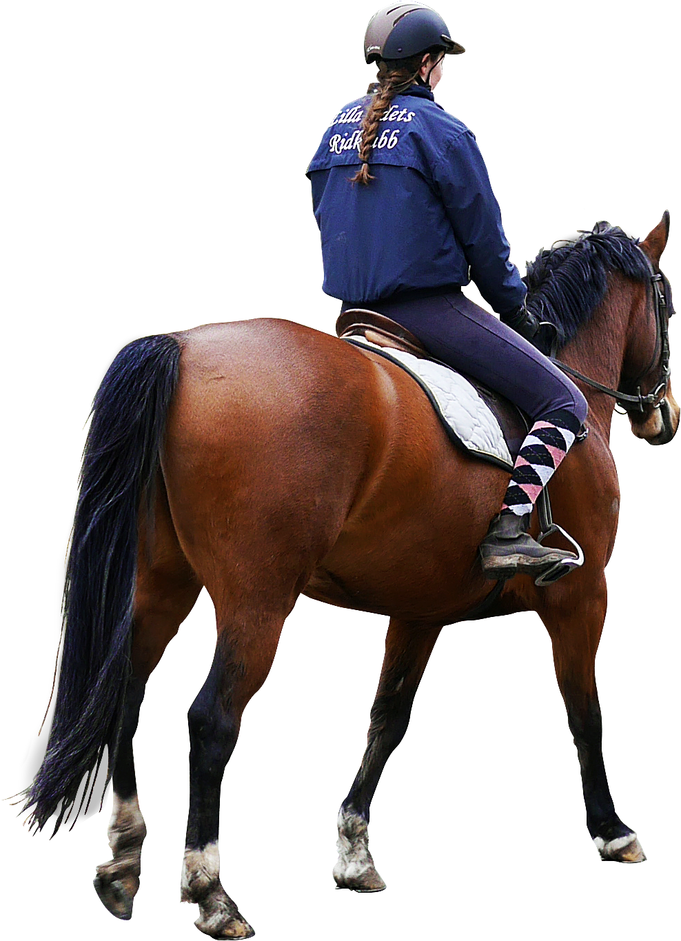 PNG Horse Riding - 69311