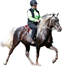 PNG Horse Riding - 69303