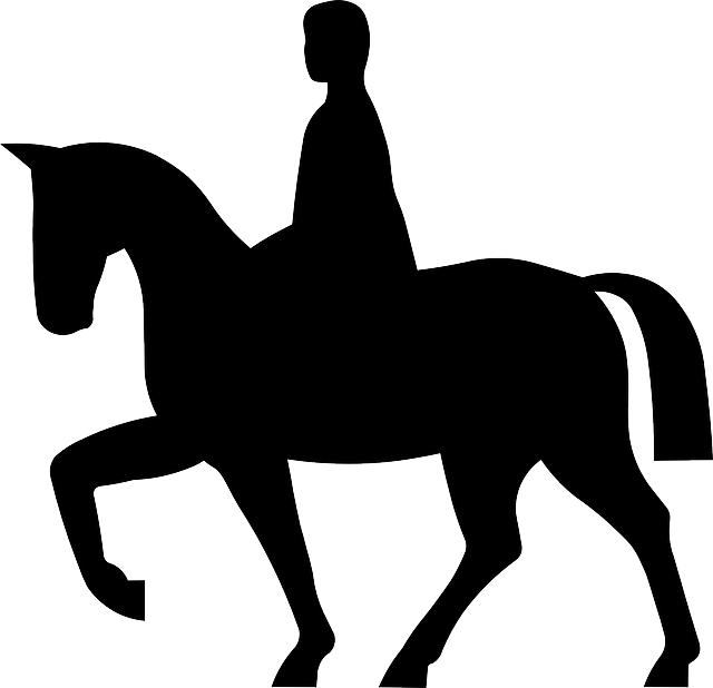 Free vector graphic: Horse, Rider, Equestrian, Animal - Free Image on  Pixabay - 145934 - PNG Horse Riding