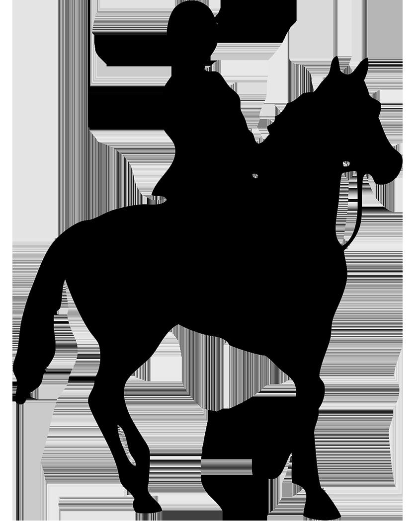 pin Horse Riding clipart horseman #9 - PNG Horse Riding