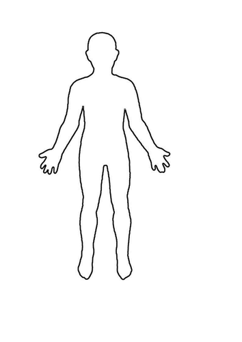 PNG Human Body Outline - 69391