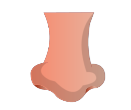 human nose 2 Click to Preview - PNG Human Nose