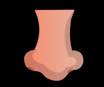 PNG Human Nose - 69785