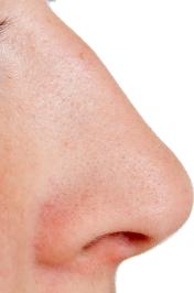 PNG Human Nose - 69787