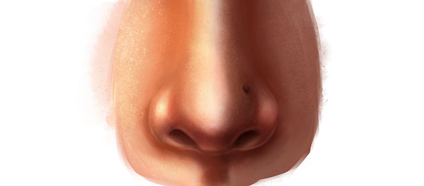 Painting a Realistic Human Nose Easily - PNG Human Nose