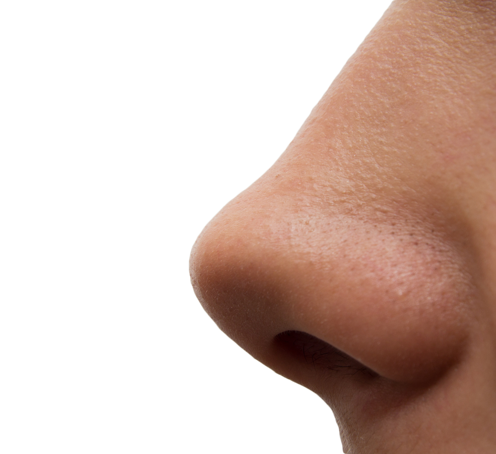 the Human Nose Can Pic. PlusPng.com PlusPng.com  - PNG Human Nose