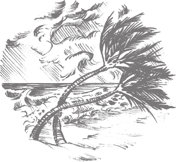 PNG Hurricane - 50767