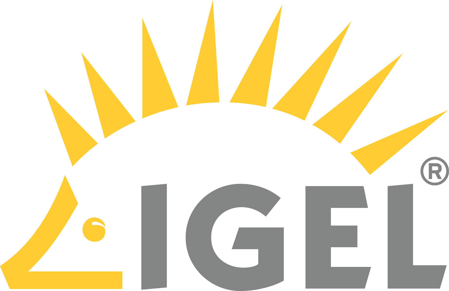 Download (58 KB). IGEL Technology - PNG Igel