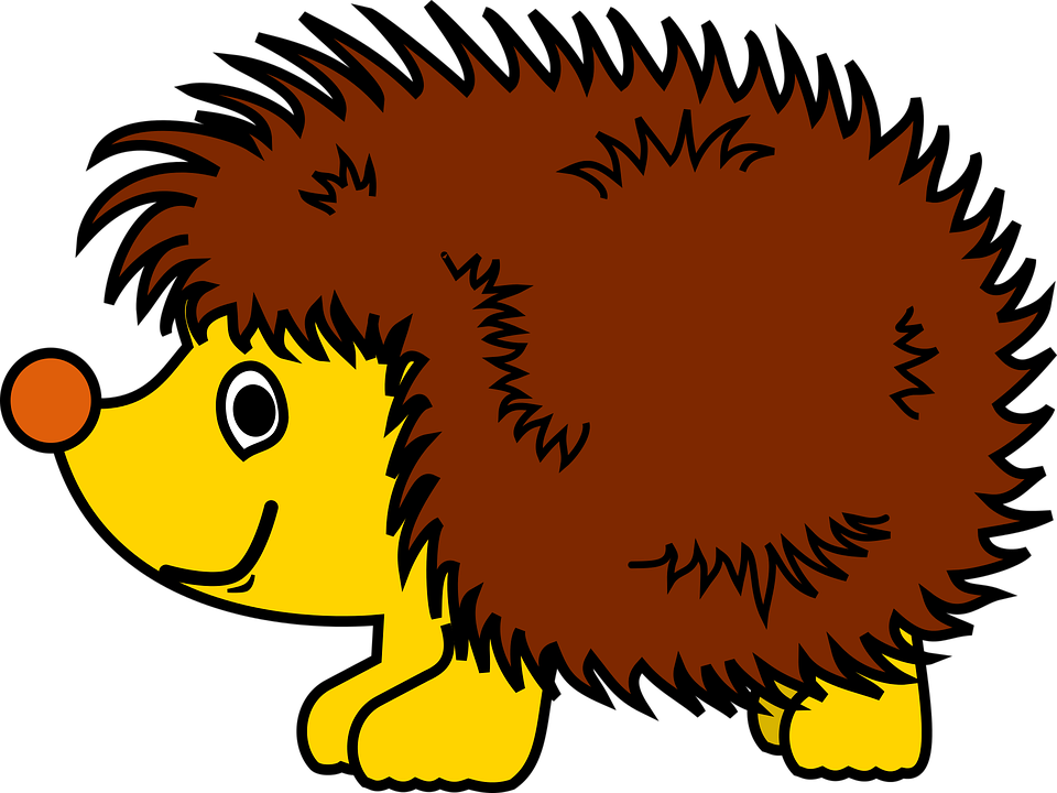 Igel, Tier, Cartoon, Spitzen - PNG Igel
