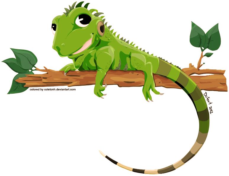 PNG Iguana - 47175