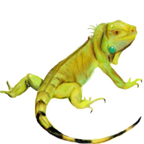 PNG Iguana - 47164