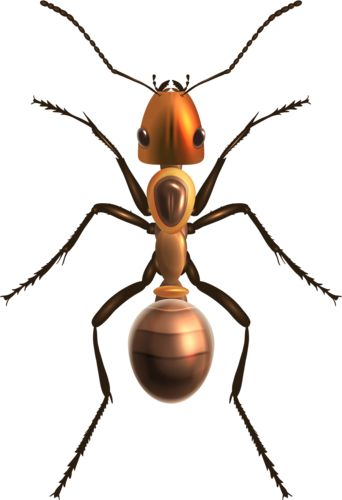 Ant PNG Clip Art, Insects PNG
