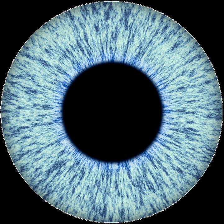 PNG Iris - 70153