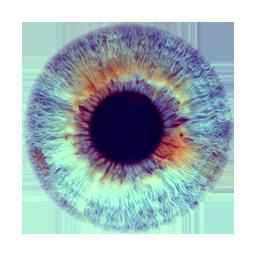 PNG Iris - 70151