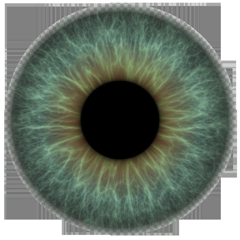 PNG Iris - 70162