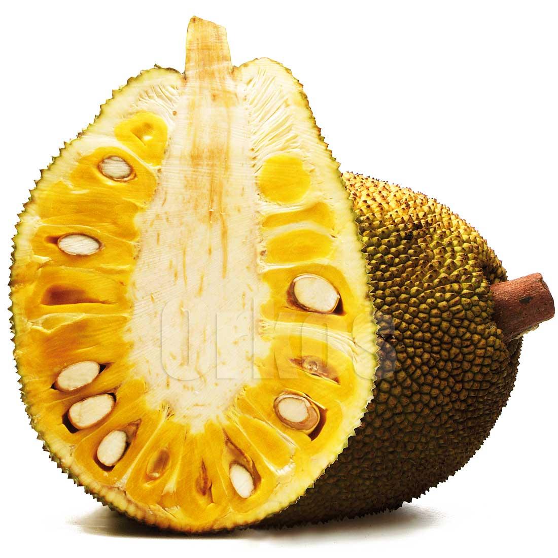 PNG Jackfruit - 70074
