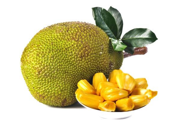 PNG Jackfruit - 70068