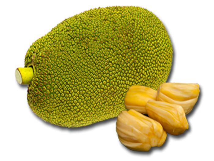 PNG Jackfruit - 70078