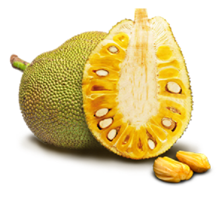 PNG Jackfruit - 70071