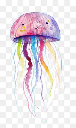 PNG Jellyfish - 48989