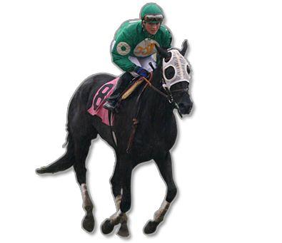 PNG Jockey - 51904