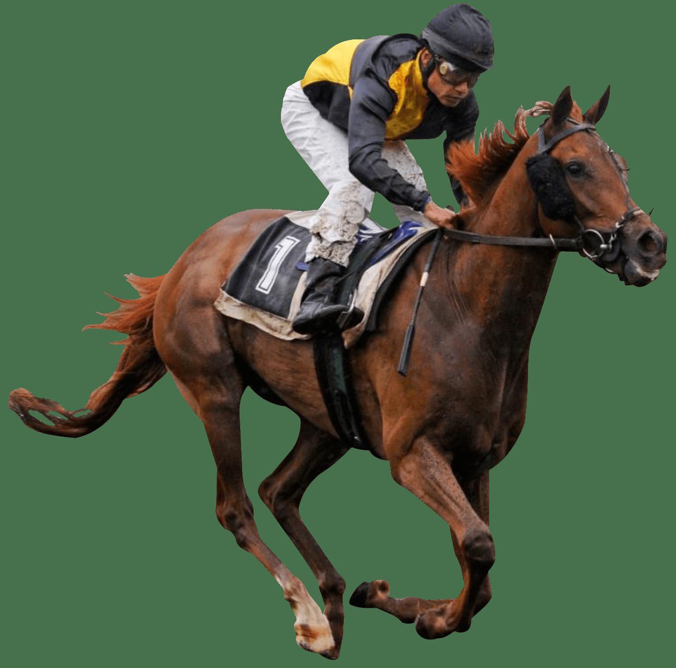PNG Jockey - 51899