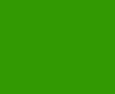 . PlusPng.com top right jungle leaf PlusPng.com  - PNG Jungle Leaf