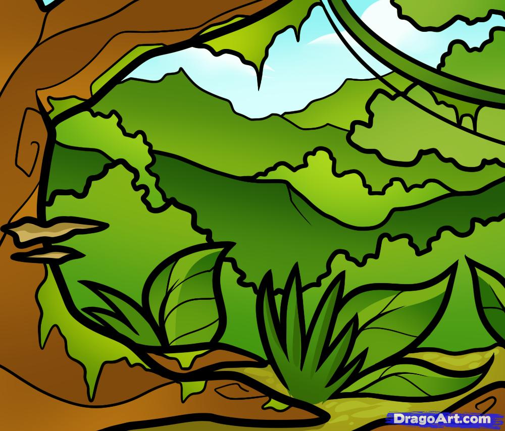 PNG Jungle Scene - 48823