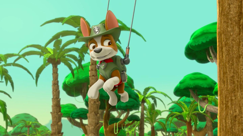 PNG Jungle Scene - 48830