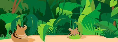 PNG Jungle Scene - 48814