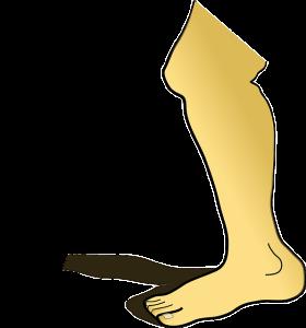 PNG Knee - 46855