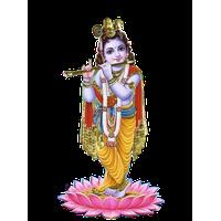 PNG Krishna - 44529