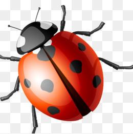 A ladybird, Ladybug, Seven, Ladybug PNG Image - PNG Ladybird