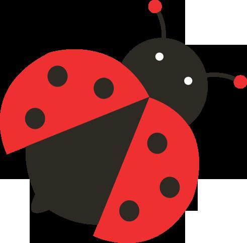 Ladybird - PNG Ladybird
