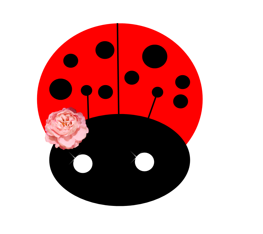 ladybird png by NaTaedits PlusPng.com  - PNG Ladybird