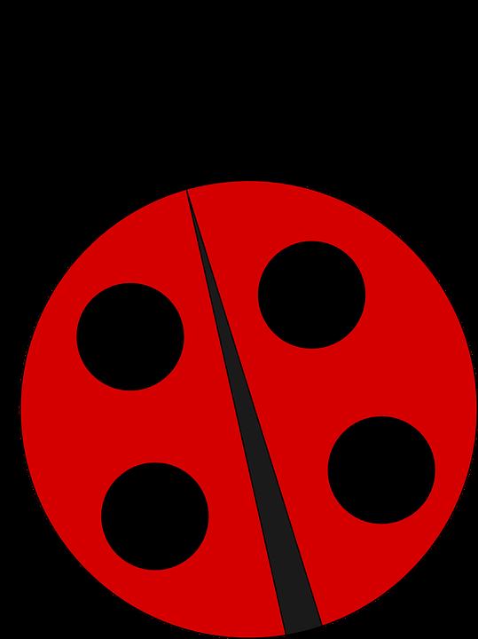 Ladybug, Ladybird, Nature, Insect, Bug, Beetle, Red - PNG Ladybird