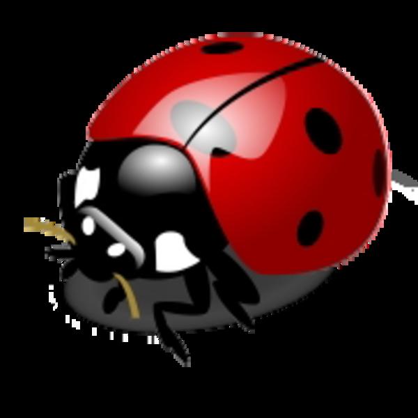 PNG: Small · Medium · Large - PNG Ladybird