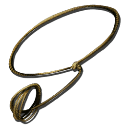 PNG Lasso - 43626
