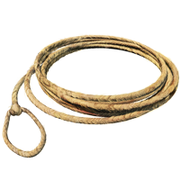 PNG Lasso - 43625