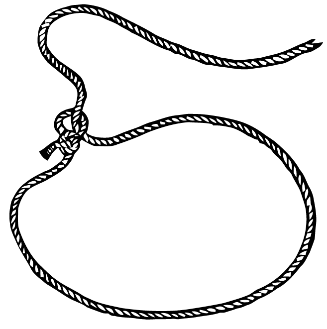 PNG Lasso - 43630