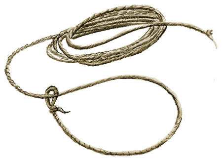 PNG Lasso - 43638