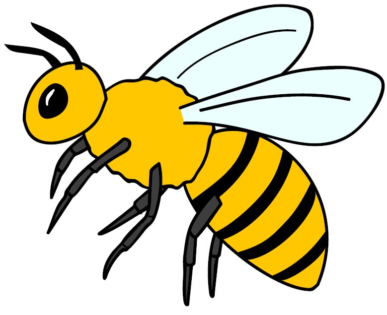 PNG Lebah-PlusPNG.com-779 - PNG Lebah