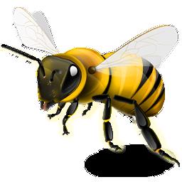 Lebah. http://indoislamicstore pluspng.com/blog/wp-content/uploads/ - PNG Lebah