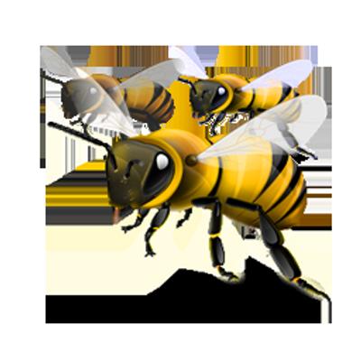 lebah info - PNG Lebah